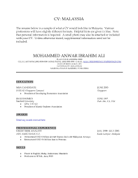 Bioinformatics Resume Sample Generous Msc Bioinformatics Resume Ideas Entry Level Resume 44