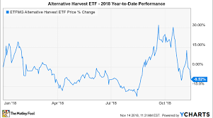 Etfmg Stock Chart Why Etfmg Alternative Harvest Etf Is Down 9 5 So Far In