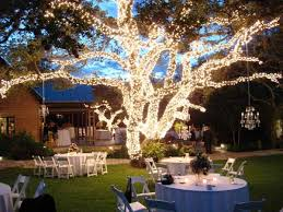 Elegant backyard wedding decoration idea using plugged in lights and trees.  Decorate trees with lights to get this look