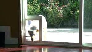 patio panel pet door door with pet door installed freedom aluminum patio panel sliding glass pet