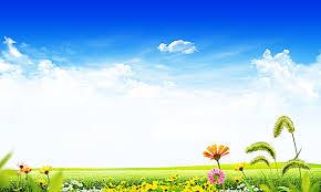 green grass blue sky flowers. Fresh Green Grass Blue Sky Background, Fresh, Sky, Green, Background Image Flowers