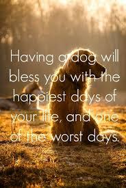 Landscape Quotes Pinterest Inspirational 40 Best Inspirational Dog Best Dog Death Quotes