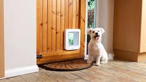 5 reasons why you ll want a smart pet door