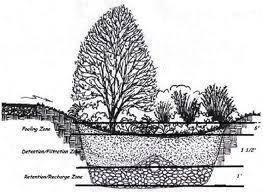 Small Picture Rain Garden Ravenscourt Landscaping Design LLC