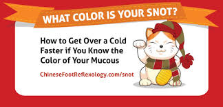 What Color Is Your Snot Wind Cold Vs Wind Heat Infographic