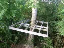 Simple Tree House Plans Tiny House