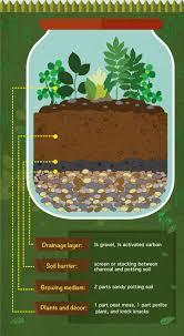 how to build a terrarium layering materials