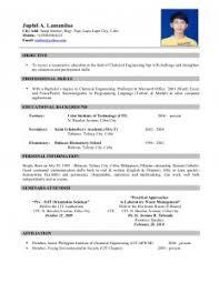 Example Resume  School Leaver Resume Template  school leaver     educational background resume samples   Template   example resume education