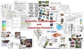 Scientific Classification And Taxonomy Packet Homeschool