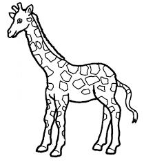 Giraffe Coloring Page 01
