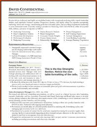 Core Competencies Resume Custom Resume Core Competencies Examples Kenicandlecomfortzone