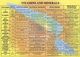 Vitamins And Minerals Sources And Functions Chart Vitamin Chart For Women Vitamins And Minerals Chart A4