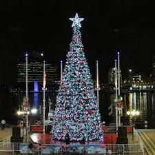 Tree Lighting Jacksonville Jacksonville Holiday Events