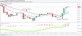 Bitcoin Btc Price Analysis July 20 Coinpath
