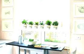 window herb garden window herb garden garden kitchen window hanging kitchen herb garden kitchen window hanging