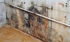 water seepage and basement leaks