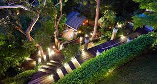 Evergreen Outdoor Landscape Lighting Outdoor Landscaping Plants Are Trying Flowers Full Sun Best
