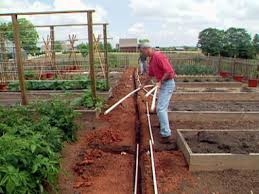 lay long run of pipe down center garden trench