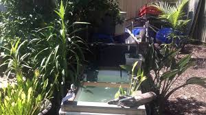 outdoor turtle pond made from bath tub