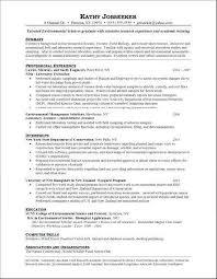 Business Analyst Resume Custom Senior Financial Analyst Resume Beautiful Senior Business Analyst