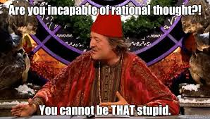 Are you incapable of rational thought?! You cannot be THAT stupid ... via Relatably.com