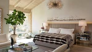 Kết quả hình ảnh cho cây cảnh phòng ngủ