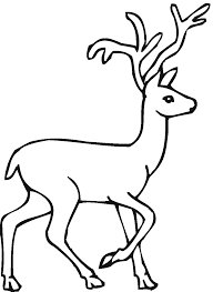 Small Picture Deer Coloring Pages For Toddlers Coloring Coloring Pages