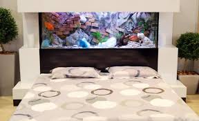 aquarium headboard bedroom set