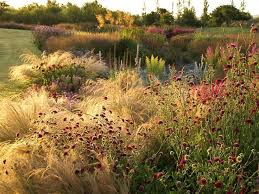 Small Picture 8066 best Jardin Garden images on Pinterest Landscaping