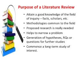 Writing a Literature Review  handout Page