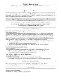 Sample Cv Sales And Marketing Manager