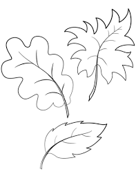Small Picture Fall Autumn Leaves coloring page Free Printable Coloring Pages