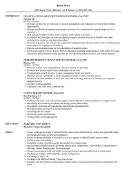 Client Service Senior Analyst Resume Samples Velvet Jobs