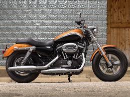 harley davidson sportster 1200 custom india launch on january 28th