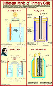 Charts Related To Physics Different Kinds Of Primary Cells Wall Chart 2014 By