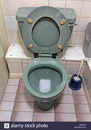 Avocado Bathroom Suite Classic 1970s 1980s Green Avocado Bathroom Suite Toilet From