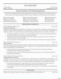 Cruise Consultant Sample Resume Business Consultant Sample Resume Inspirational Process Consultant 16