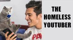 10+ Aaron Benitez & Prince Michael ideas | aaron, cats, animals