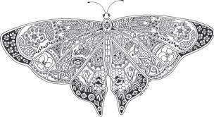 Small Picture Butterfly Coloring Pages For Adults pertaining to Property Cool