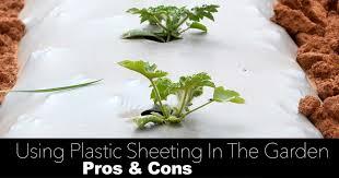 plastic sheeting in the garden