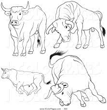 Small Picture Royalty Free Rodeo Bull Stock Coloring Page Designs