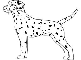 Small Picture Dalmation Coloring Pages Coloring Pages Dalmation