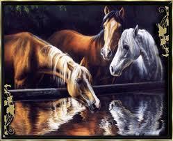 """Résultat de recherche d'images pour """"gif chevaux anume.com"""""""