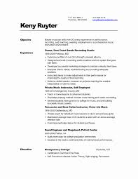 Chartered Accountant Resume Format New Resume Chartered Accountant