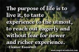 Purpose Of Life Quotes Mesmerizing Purpose Of Life Quotes Quotes About Life