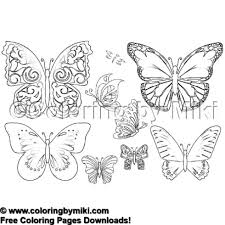 Elegant Butterfly Coloring Page 2146 Coloring By Miki