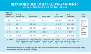 How Much To Feed A Puppy Chart Puppy Feeding Guidelines Puppy Feeding Guide Puppy