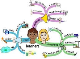 essay on learning styles visual learning style essay