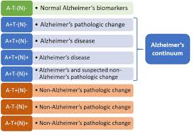 Stages Of Alzheimer S Disease Chart New Biological Research Framework For Alzheimers Seeks To