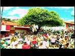 imagem de Machacalis+Minas+Gerais n-18